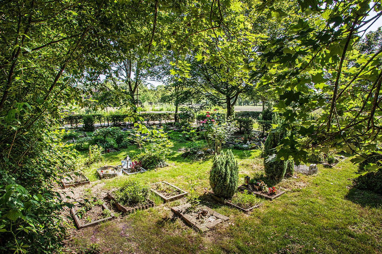 Tierfriedhof-Muenster-Erdbestattung.jpg